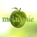 Logo Melaverde