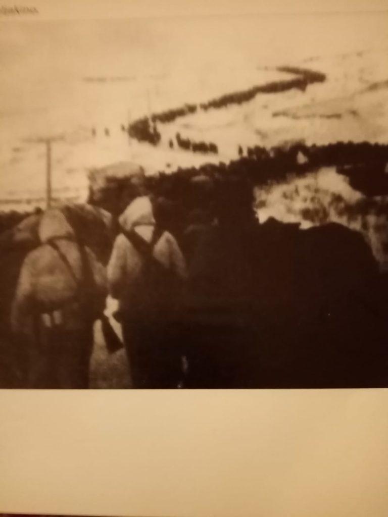 Campagna Russia 1943